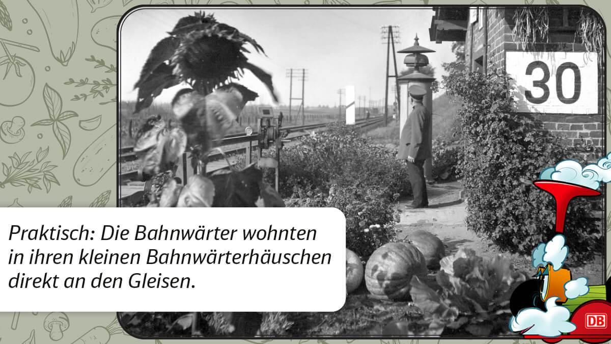 210511_DKICE_BE-04_Haustier-der-Eisenbahner